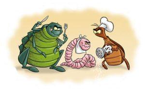 testy na alergie 1